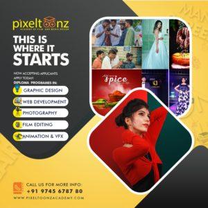 Pixeltoonz Academy